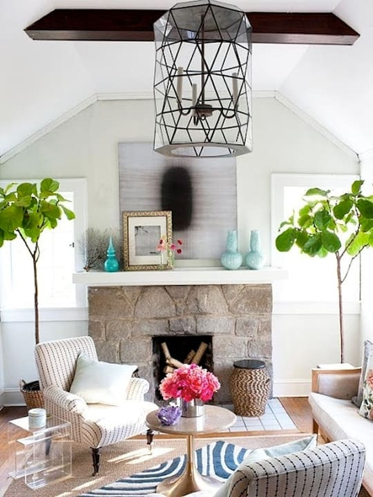 Fiddle Leaf Tree Idea